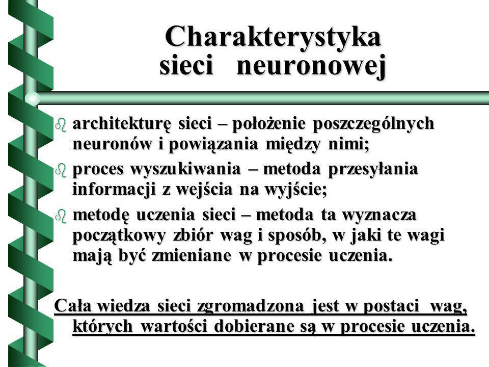 Charakterystyka sieci neuronowej