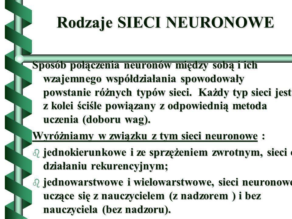 Rodzaje SIECI NEURONOWE