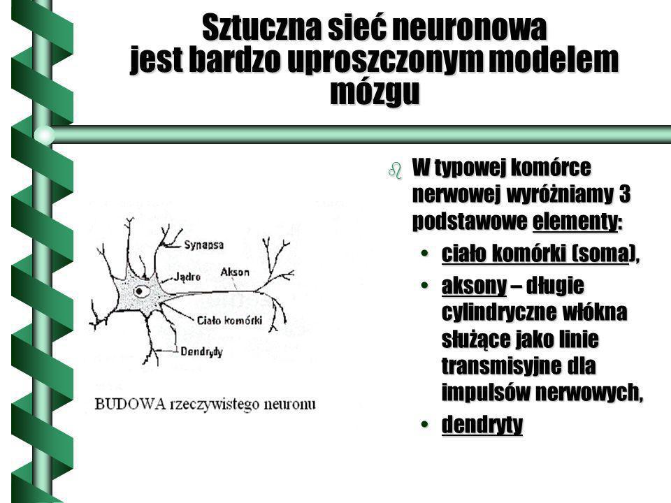Sztuczna sieć neuronowa jest bardzo uproszczonym modelem mózgu