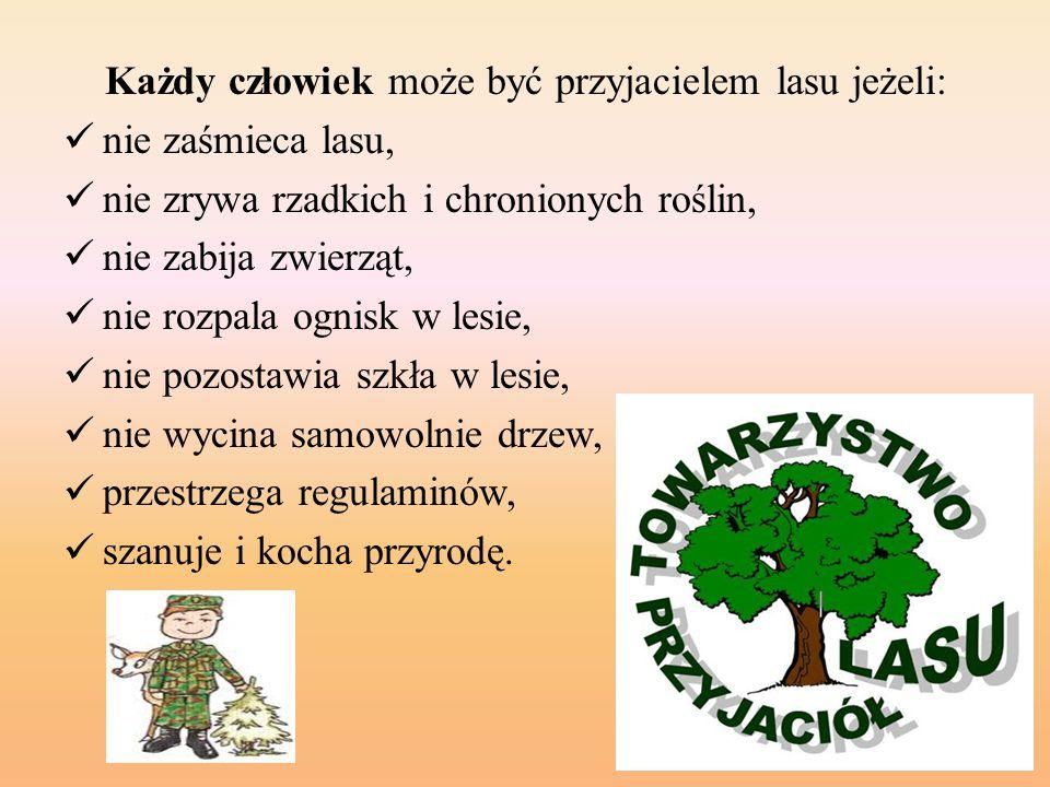 Każdy człowiek może być przyjacielem lasu jeżeli: