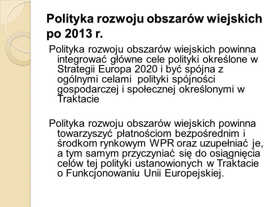 Polityka rozwoju obszarów wiejskich po 2013 r.