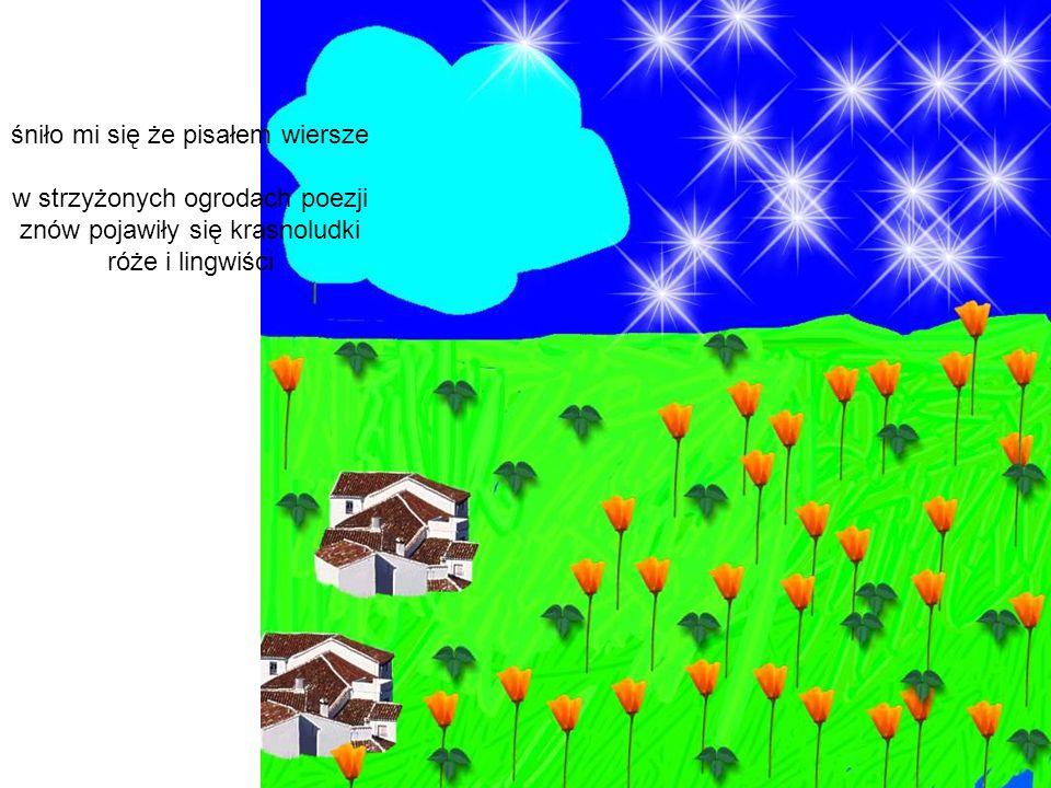 śniło mi się że pisałem wiersze w strzyżonych ogrodach poezji