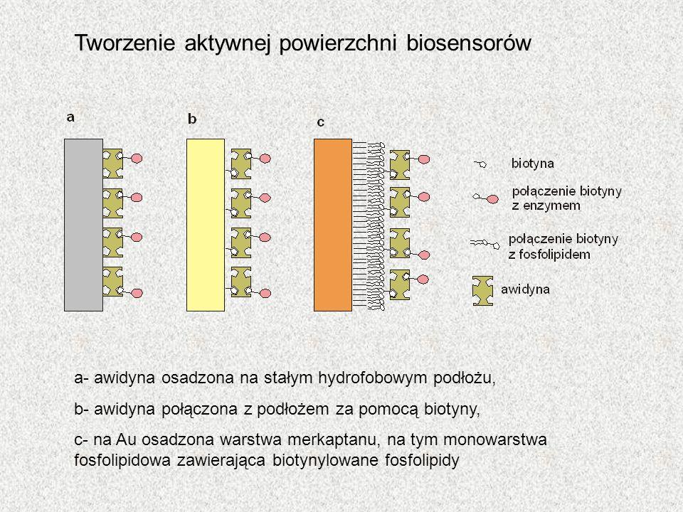 Tworzenie aktywnej powierzchni biosensorów