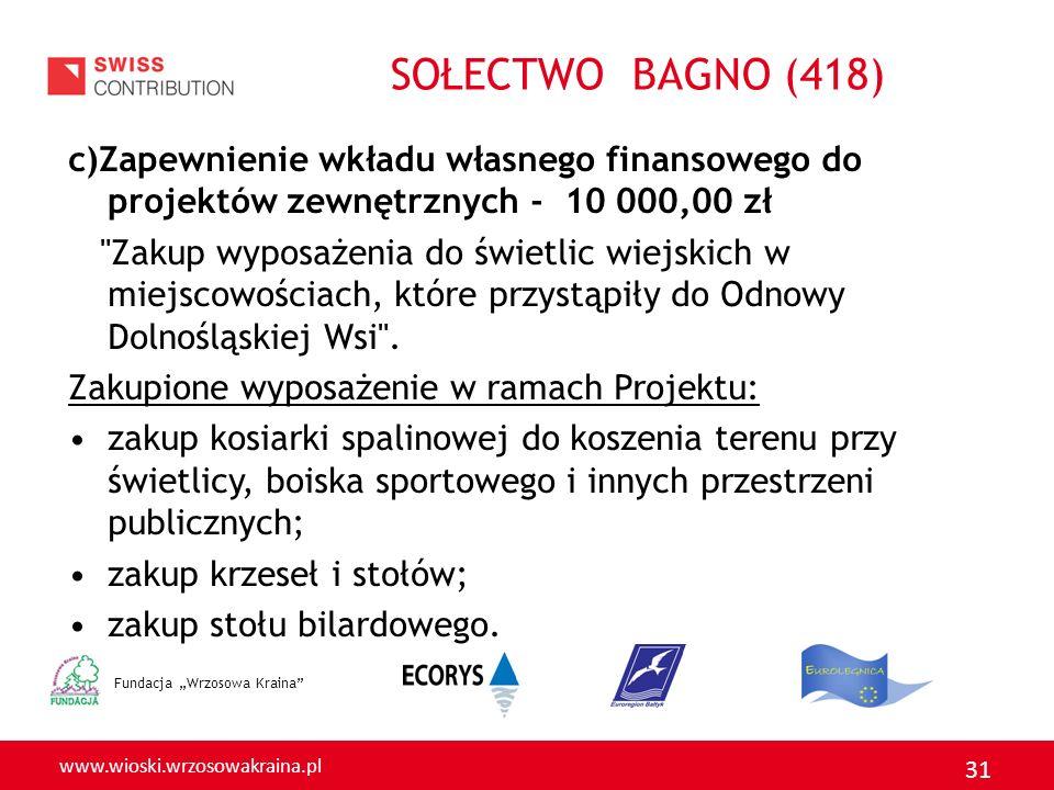 SOŁECTWO BAGNO (418) c)Zapewnienie wkładu własnego finansowego do projektów zewnętrznych - 10 000,00 zł.