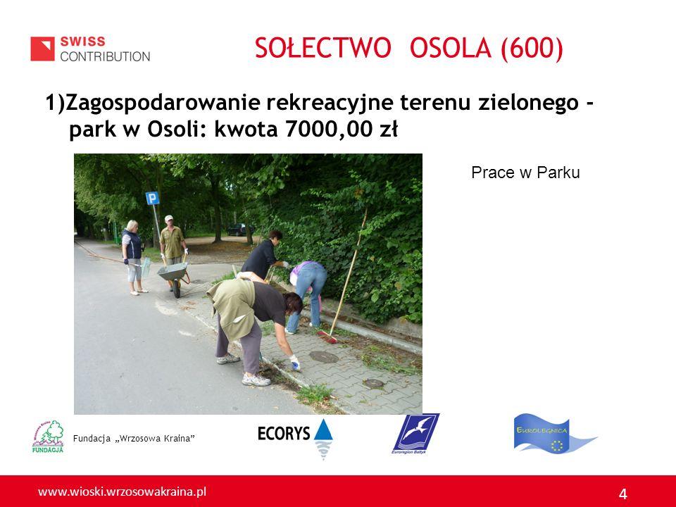 SOŁECTWO OSOLA (600) 1)Zagospodarowanie rekreacyjne terenu zielonego - park w Osoli: kwota 7000,00 zł.