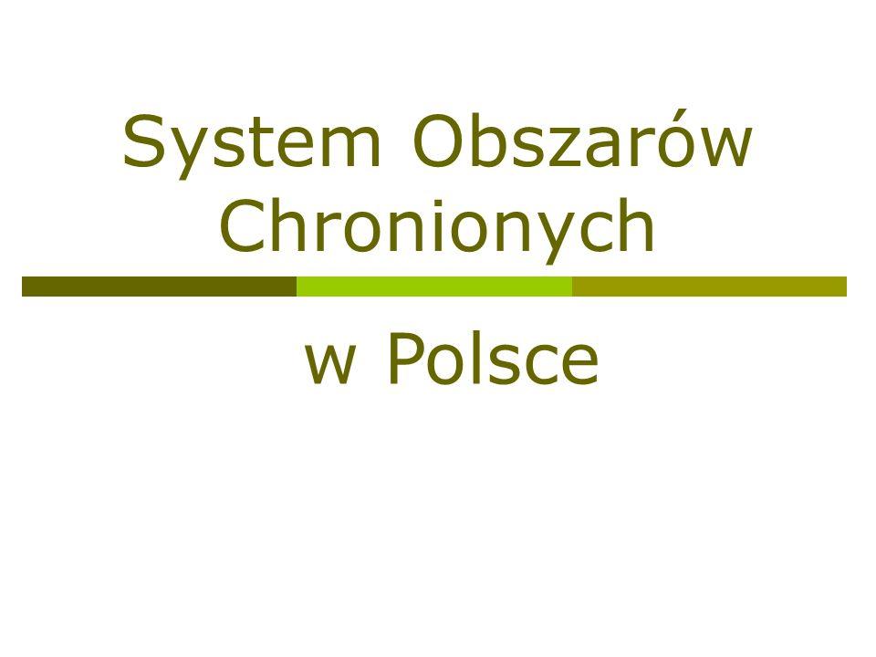 System Obszarów Chronionych