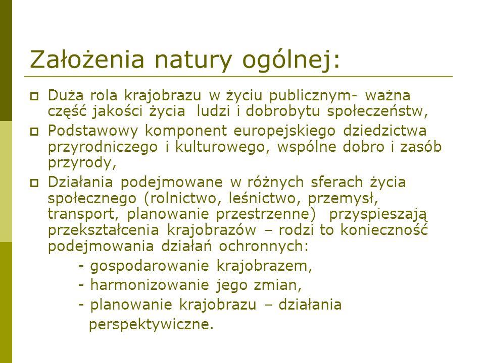 Założenia natury ogólnej: