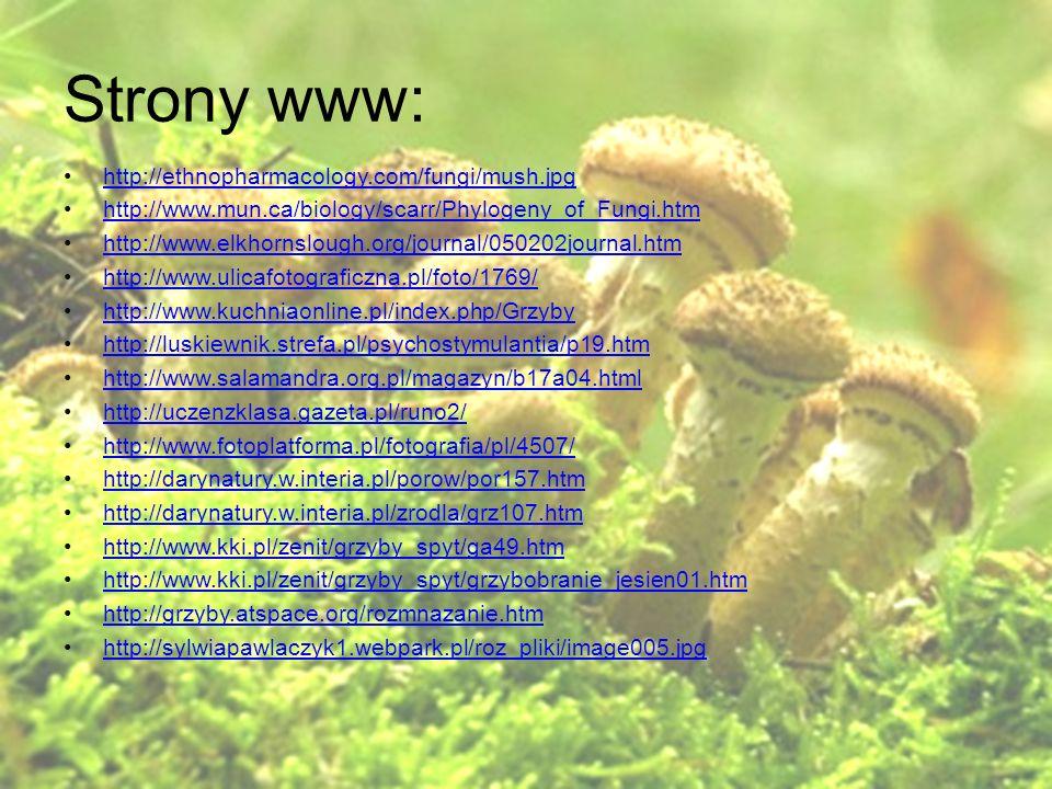 Strony www: http://ethnopharmacology.com/fungi/mush.jpg