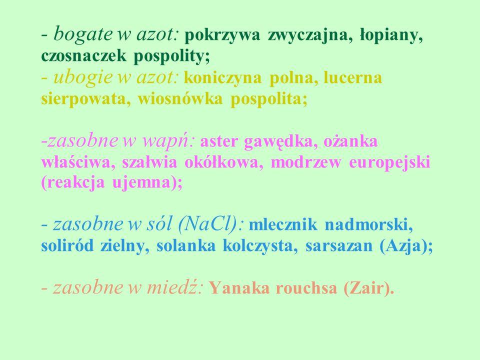 - bogate w azot: pokrzywa zwyczajna, łopiany, czosnaczek pospolity; - ubogie w azot: koniczyna polna, lucerna sierpowata, wiosnówka pospolita; -zasobne w wapń: aster gawędka, ożanka właściwa, szałwia okółkowa, modrzew europejski (reakcja ujemna); - zasobne w sól (NaCl): mlecznik nadmorski, soliród zielny, solanka kolczysta, sarsazan (Azja); - zasobne w miedź: Yanaka rouchsa (Zair).