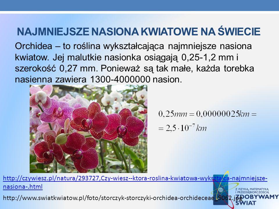 Najmniejsze nasiona kwiatowe na świecie