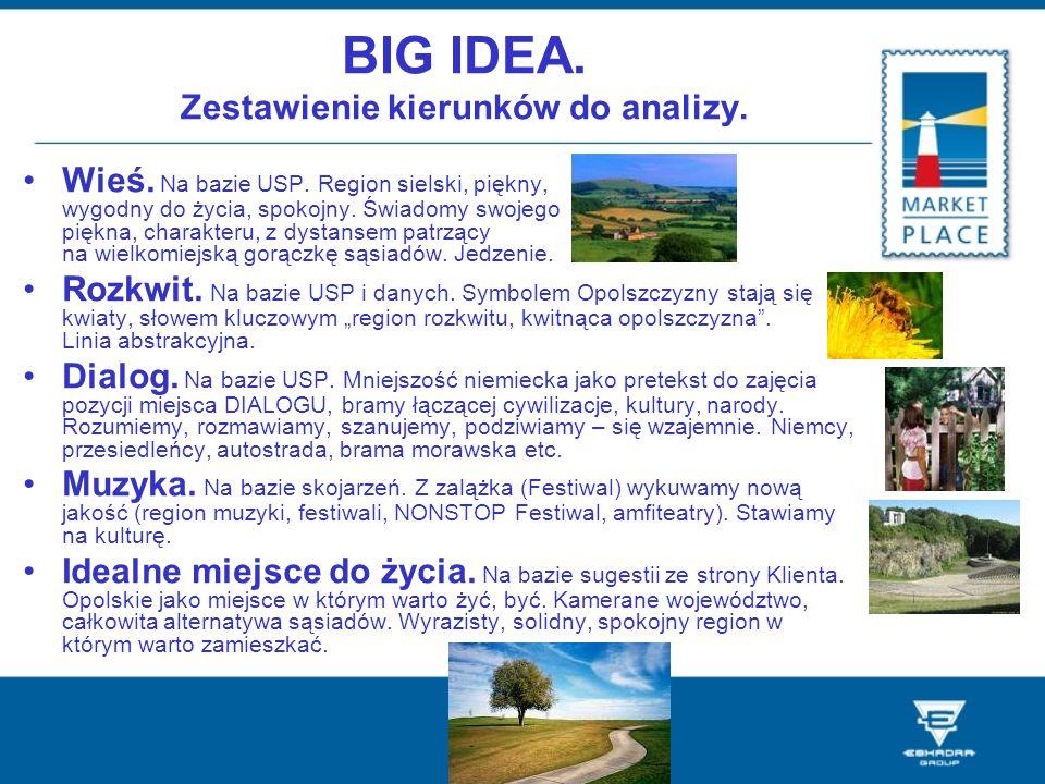 BIG IDEA. Zestawienie kierunków do analizy.