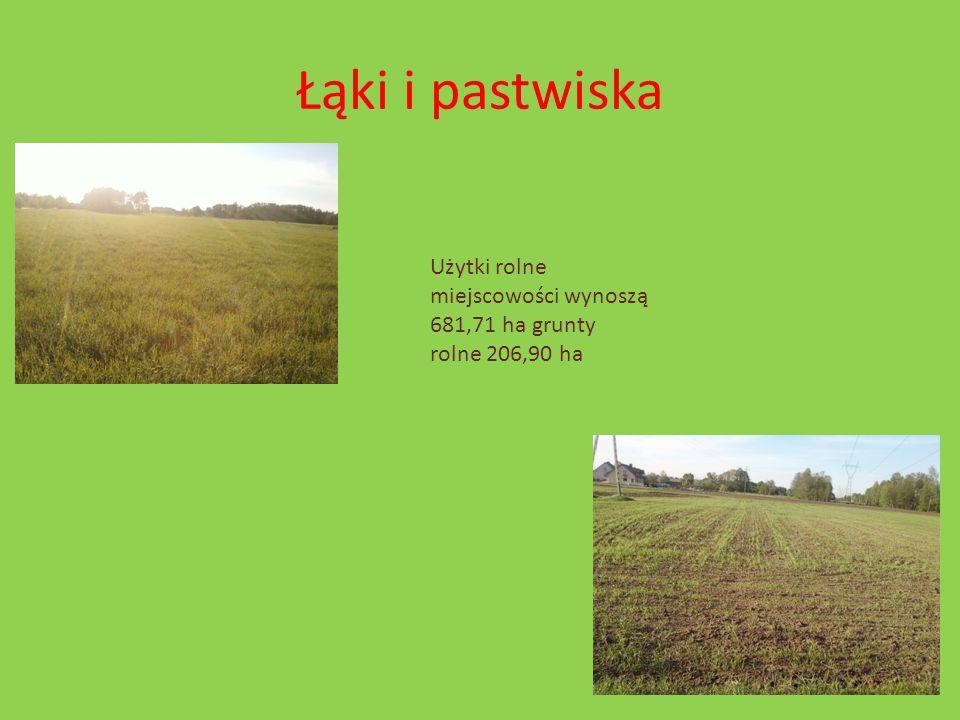 Łąki i pastwiska Użytki rolne miejscowości wynoszą 681,71 ha grunty rolne 206,90 ha