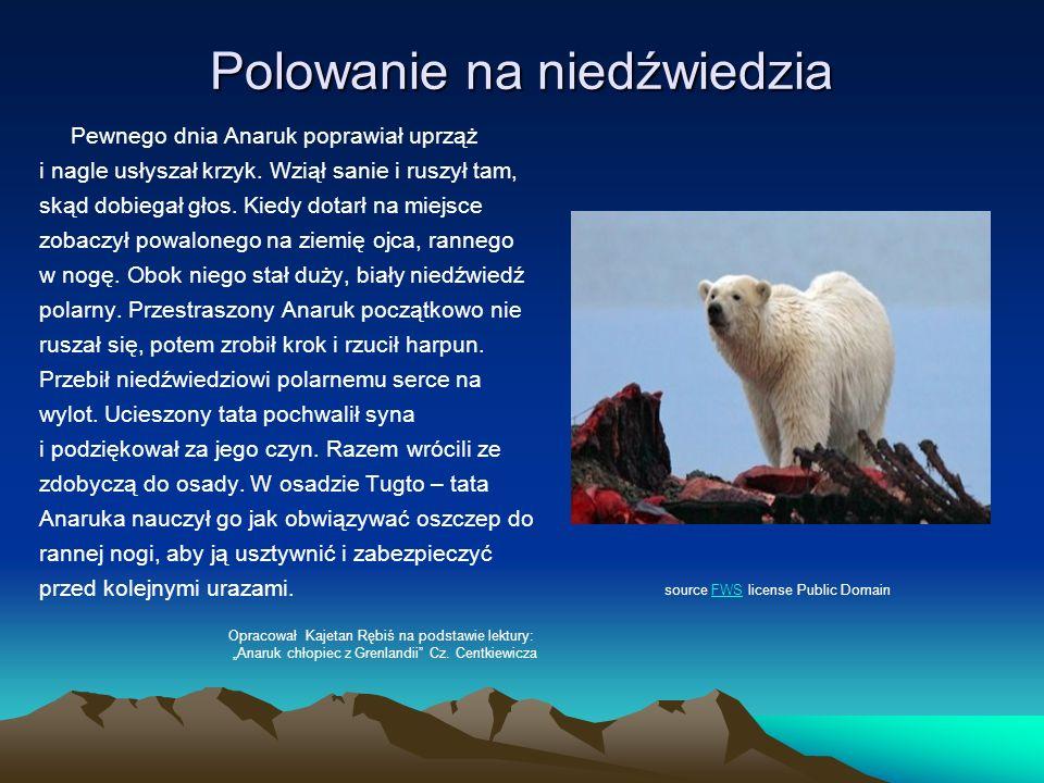 Polowanie na niedźwiedzia