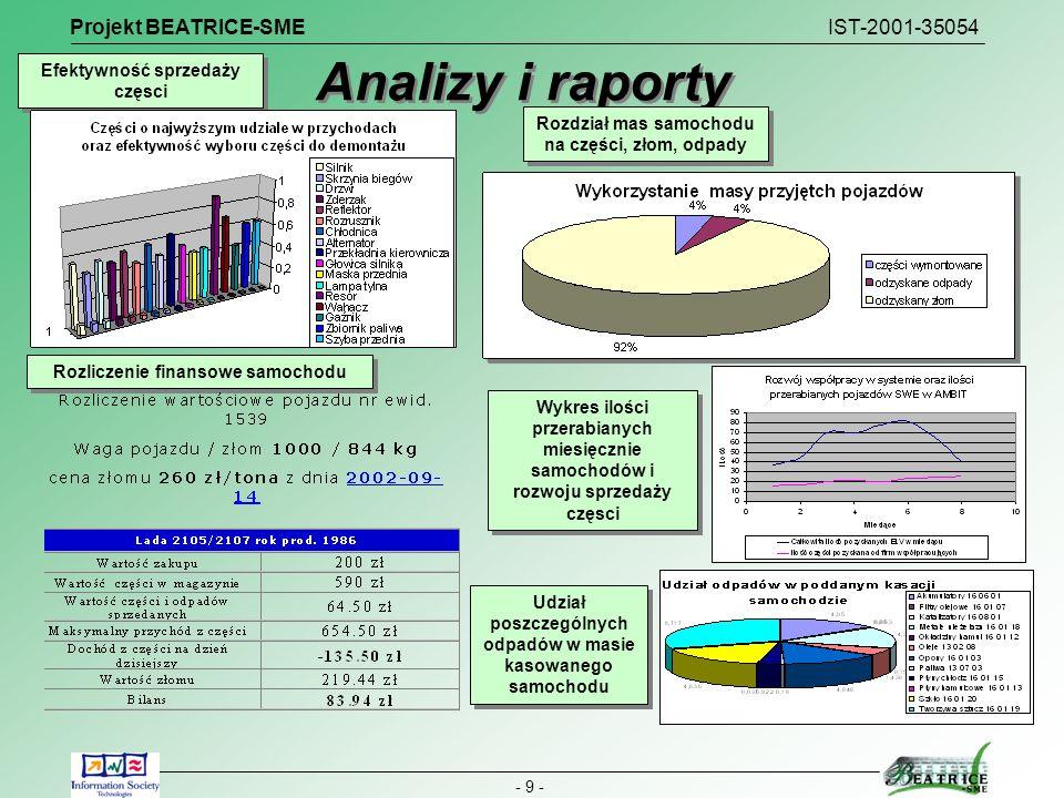 Analizy i raporty Projekt BEATRICE-SME IST-2001-35054