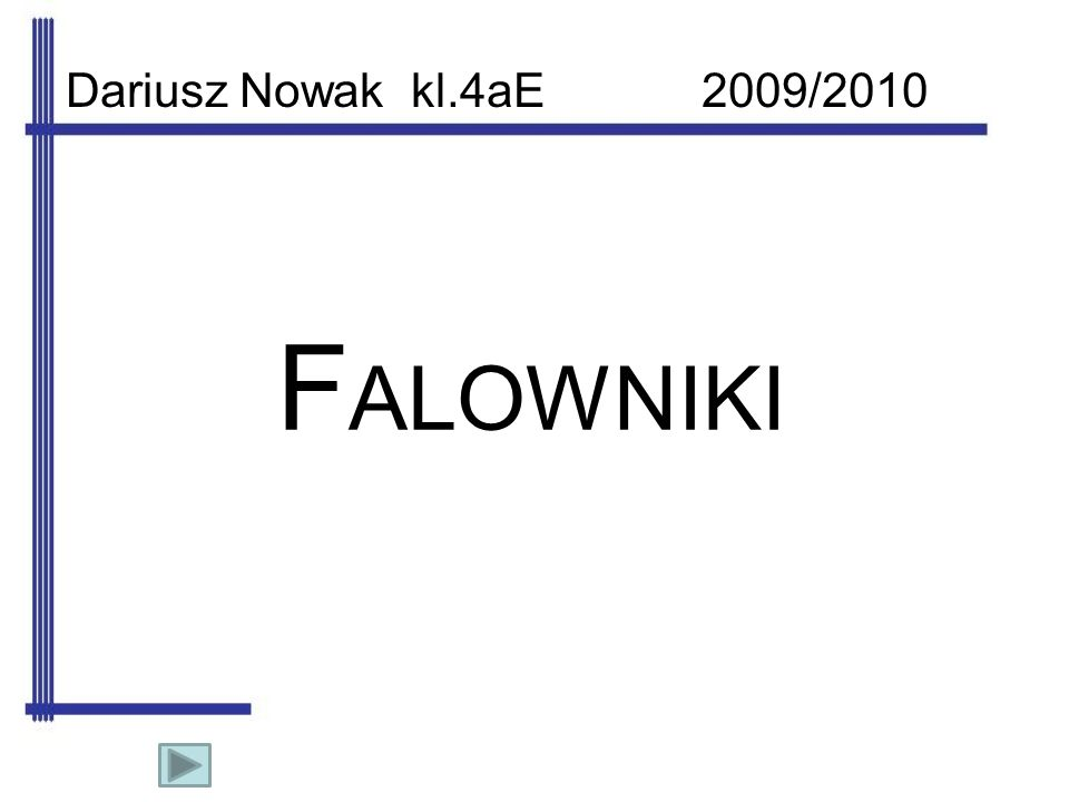 Dariusz Nowak kl.4aE 2009/2010 FALOWNIKI