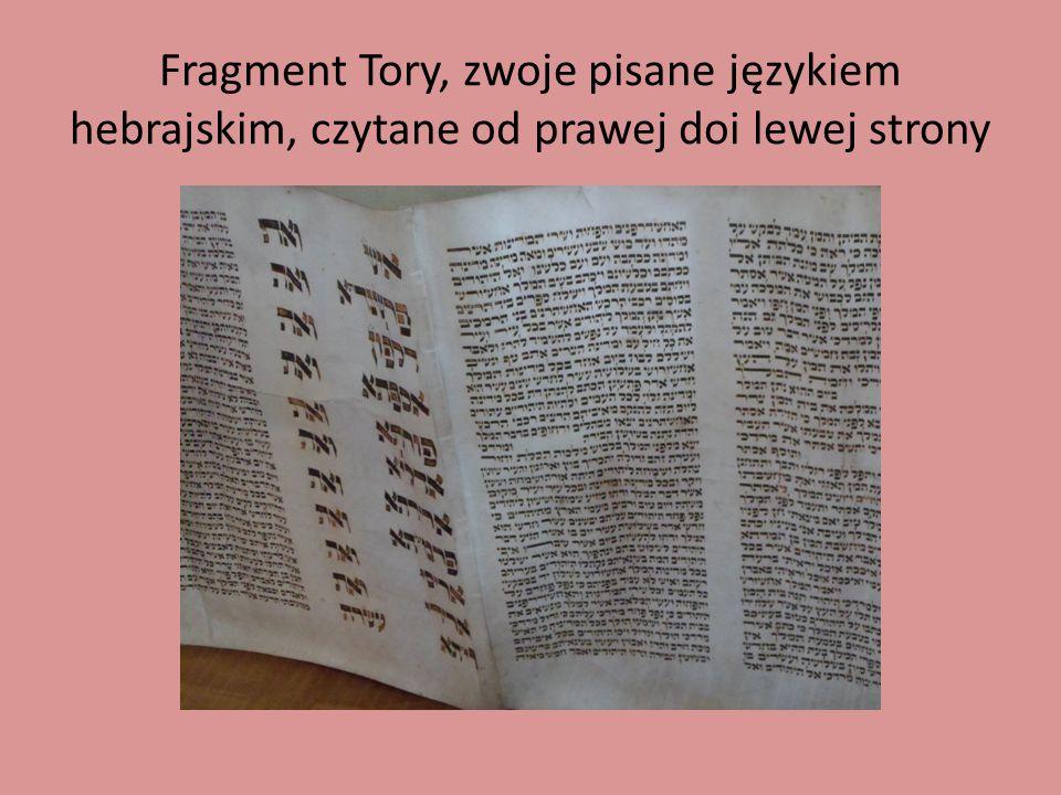 Fragment Tory, zwoje pisane językiem hebrajskim, czytane od prawej doi lewej strony