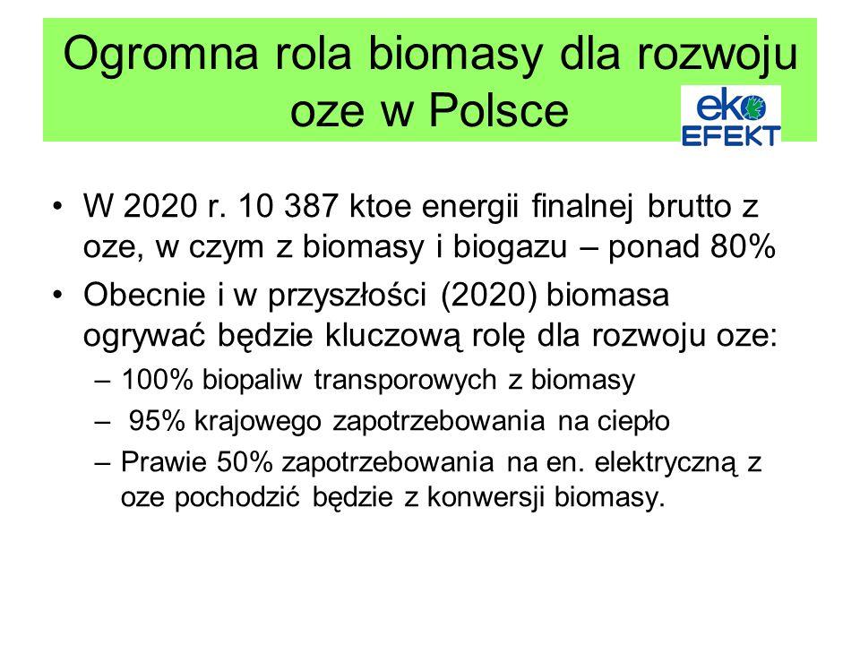 Ogromna rola biomasy dla rozwoju oze w Polsce