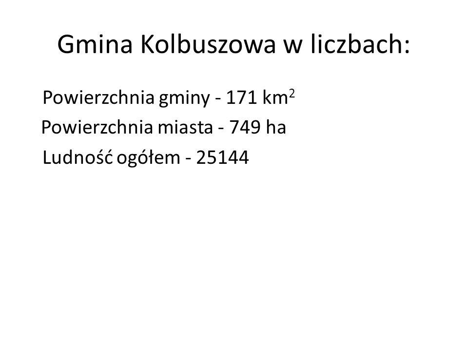 Gmina Kolbuszowa w liczbach: