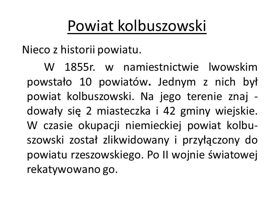 Powiat kolbuszowski