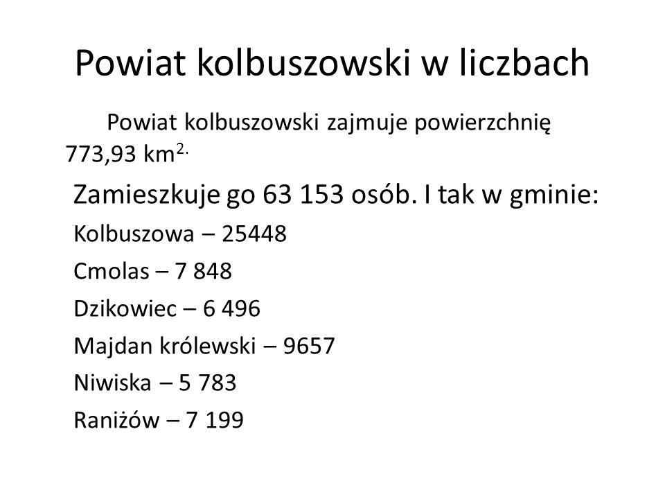 Powiat kolbuszowski w liczbach