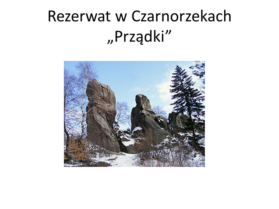 """Rezerwat w Czarnorzekach """"Prządki"""