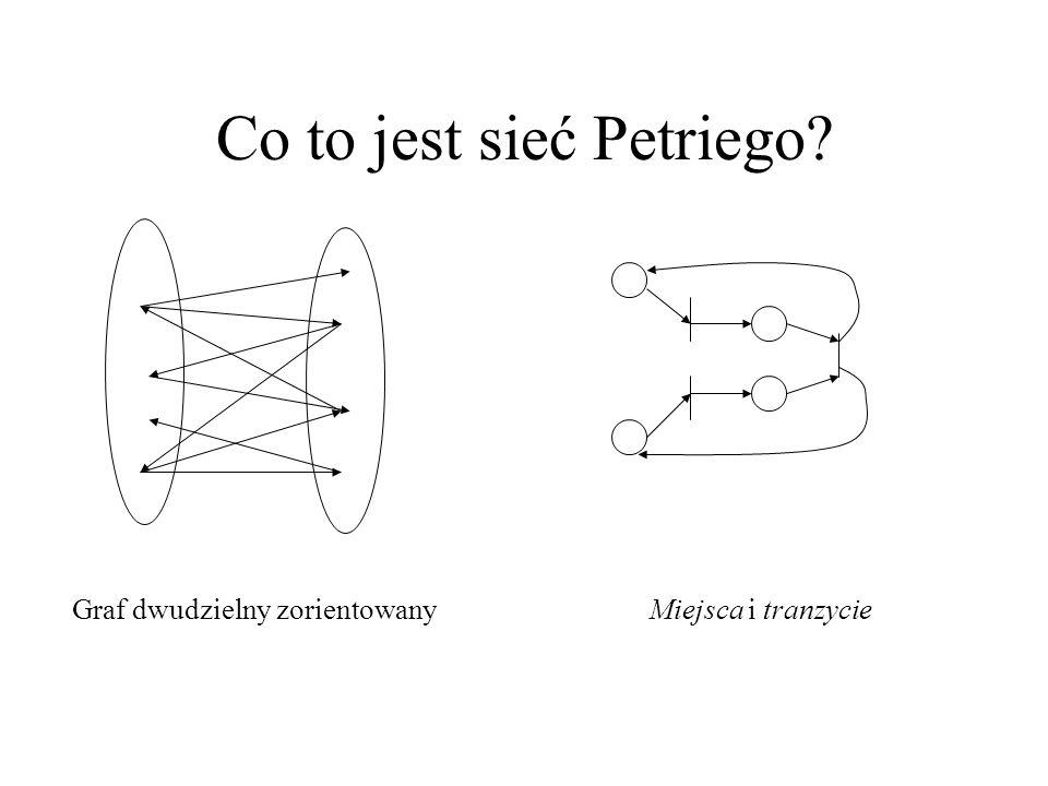 Co to jest sieć Petriego