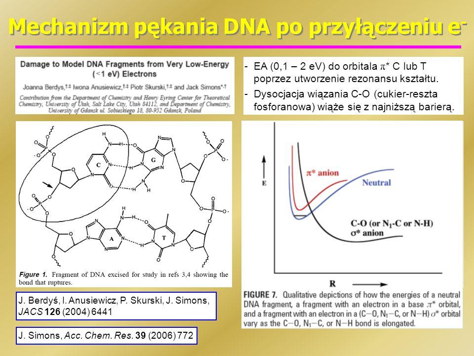 Mechanizm pękania DNA po przyłączeniu e-