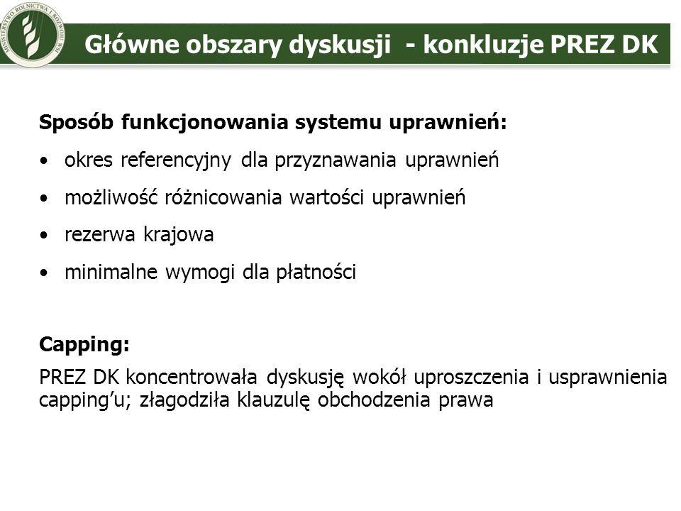 Główne obszary dyskusji - konkluzje PREZ DK