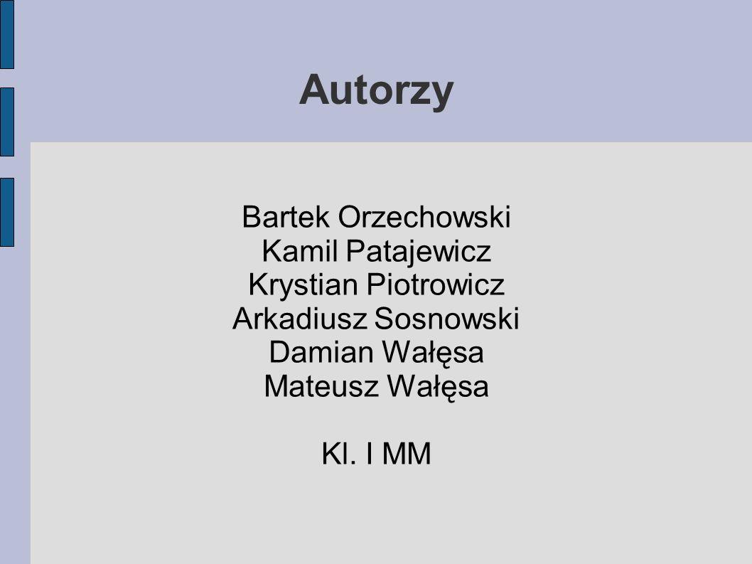 Autorzy Bartek Orzechowski Kamil Patajewicz Krystian Piotrowicz