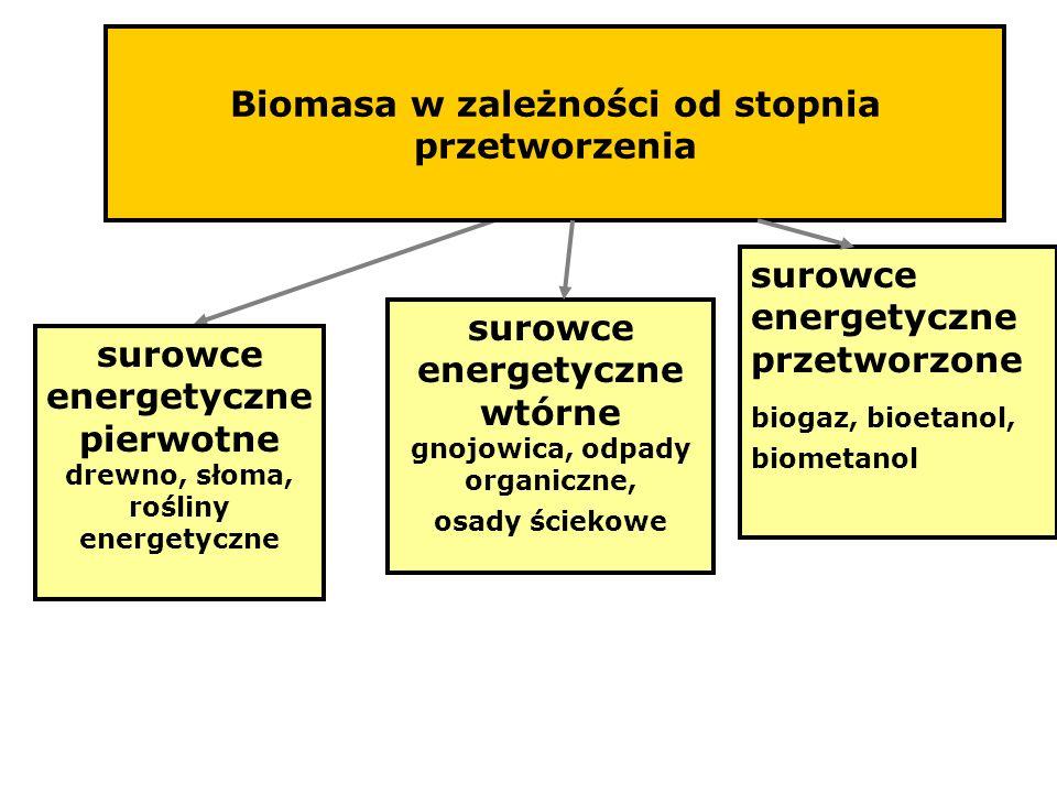 Biomasa w zależności od stopnia przetworzenia