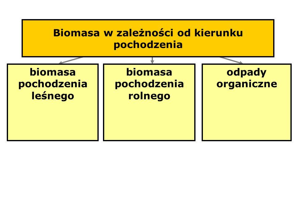 Biomasa w zależności od kierunku pochodzenia