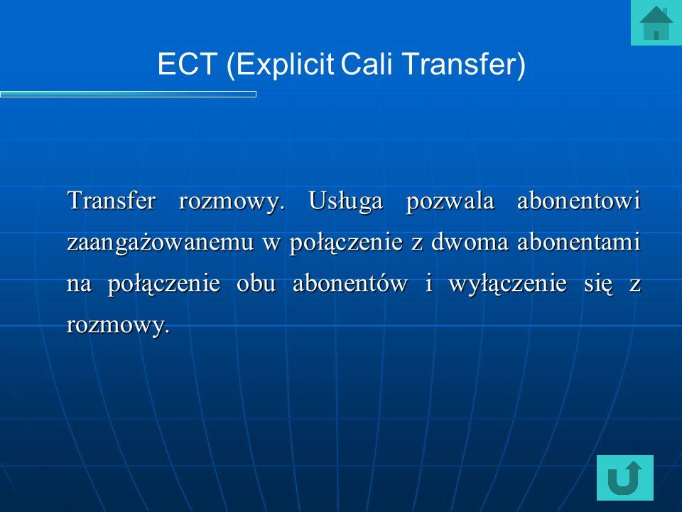 ECT (Explicit Cali Transfer)
