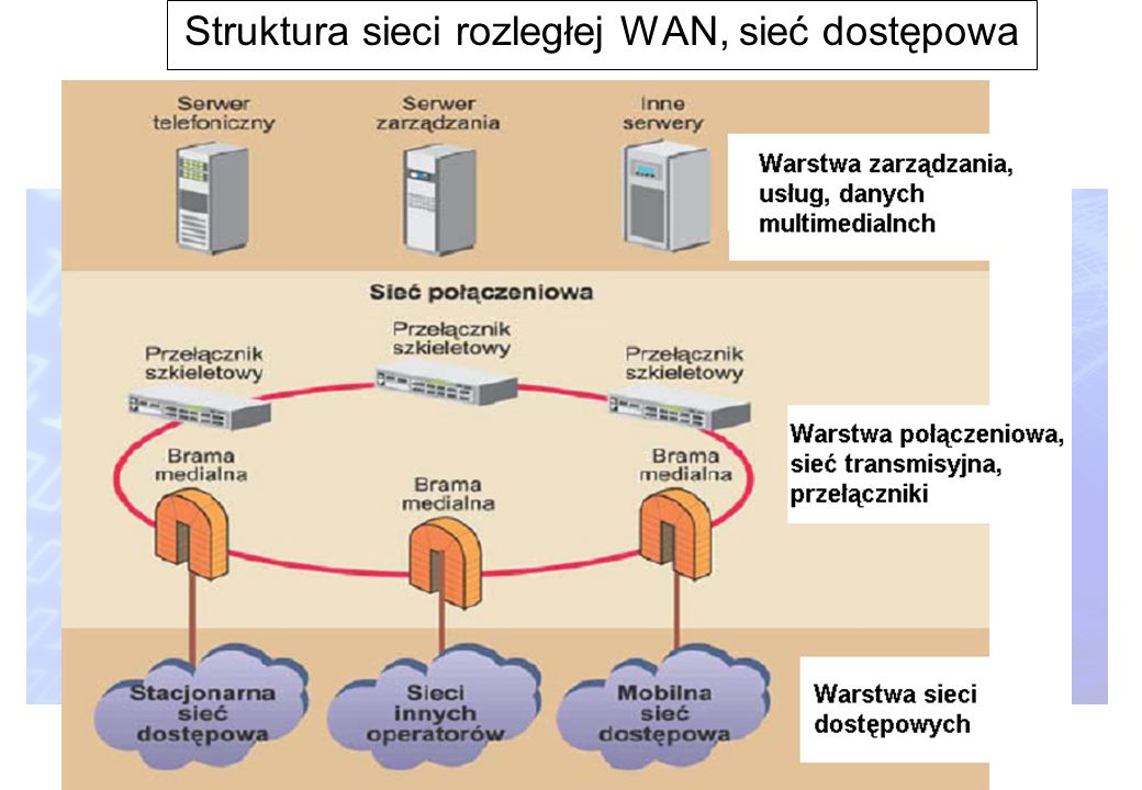 Struktura sieci rozległej WAN, sieć dostępowa