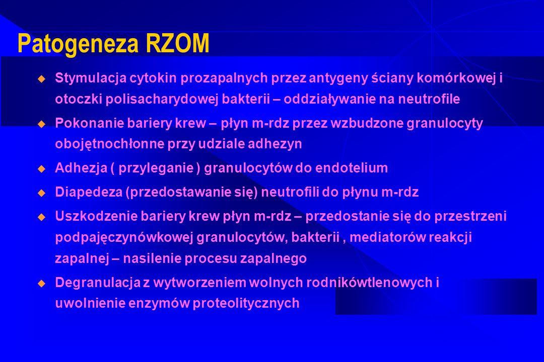 Patogeneza RZOM Stymulacja cytokin prozapalnych przez antygeny ściany komórkowej i otoczki polisacharydowej bakterii – oddziaływanie na neutrofile.