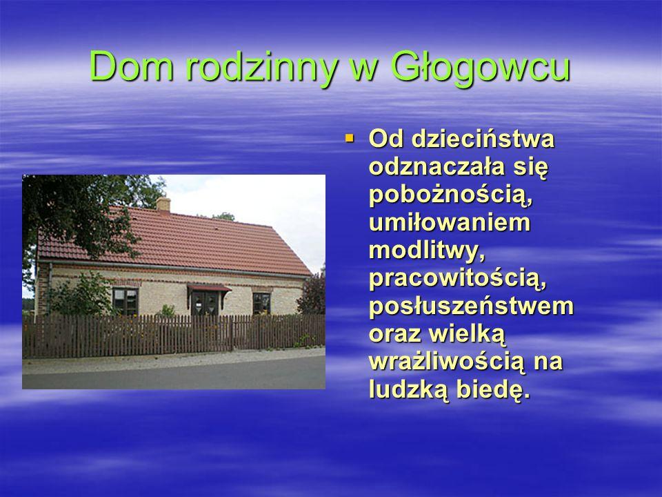 Dom rodzinny w Głogowcu