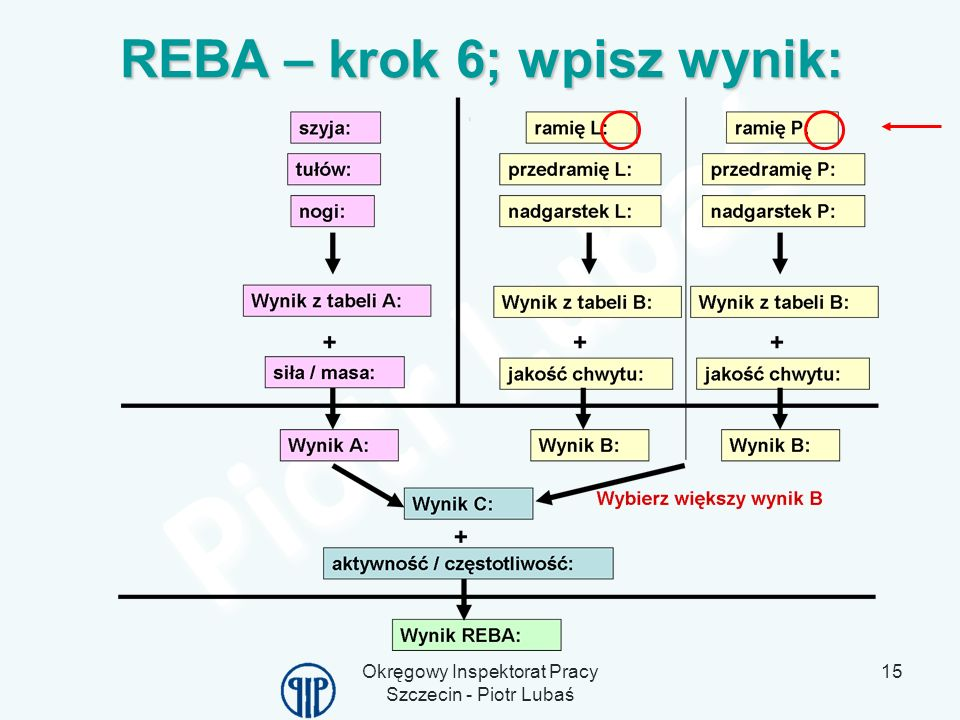 REBA – krok 6; wpisz wynik: