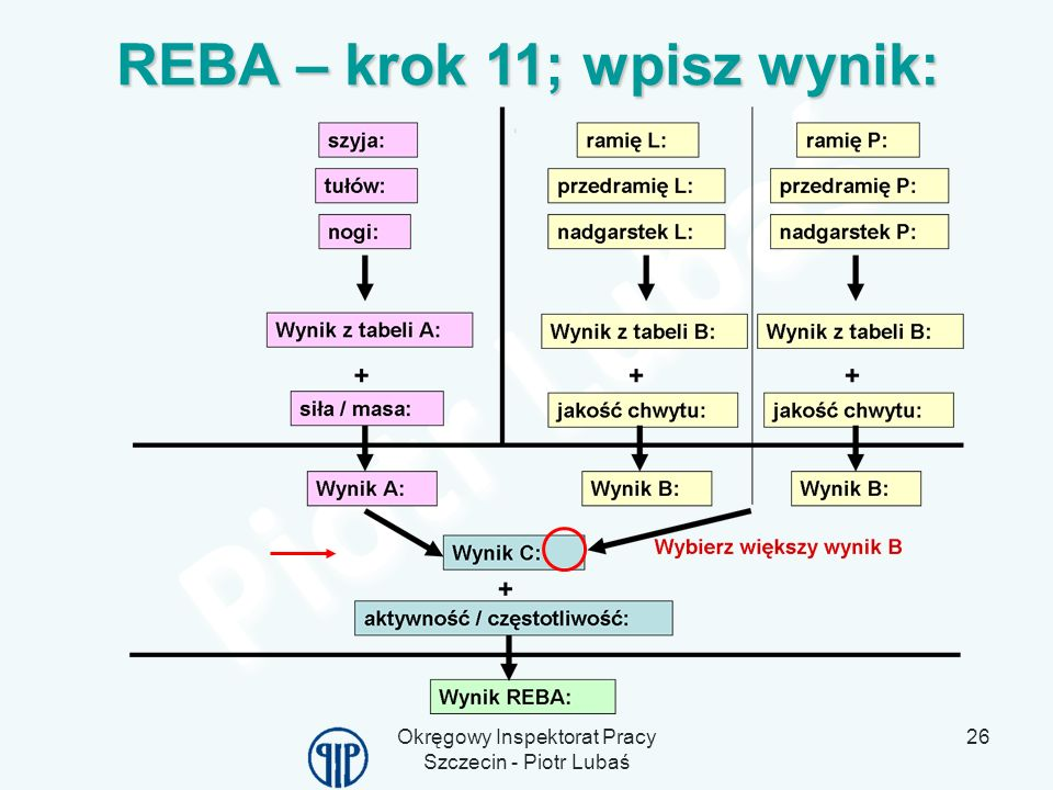 REBA – krok 11; wpisz wynik: