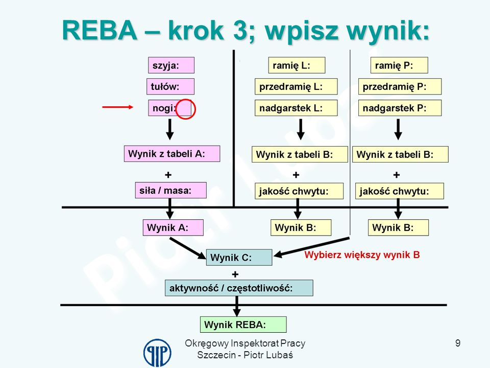 REBA – krok 3; wpisz wynik:
