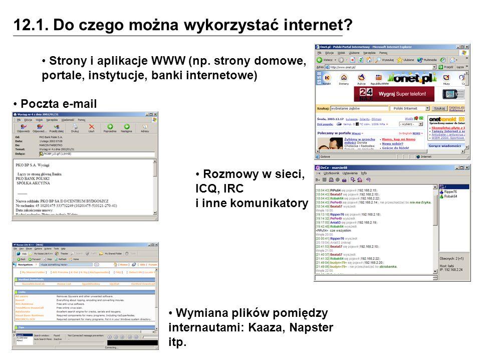 12.1. Do czego można wykorzystać internet