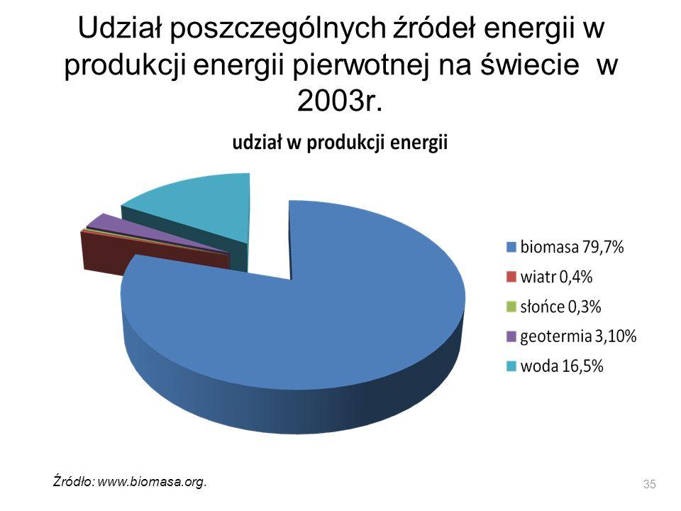 Udział poszczególnych źródeł energii w produkcji energii pierwotnej na świecie w 2003r.