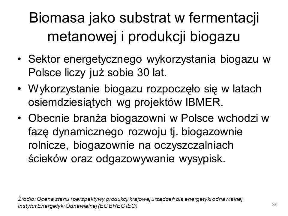 Biomasa jako substrat w fermentacji metanowej i produkcji biogazu