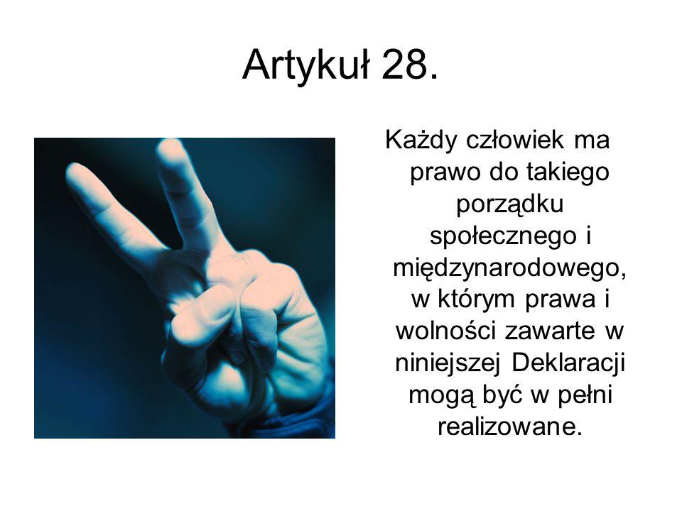 Artykuł 28.