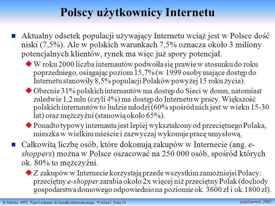 Polscy użytkownicy Internetu
