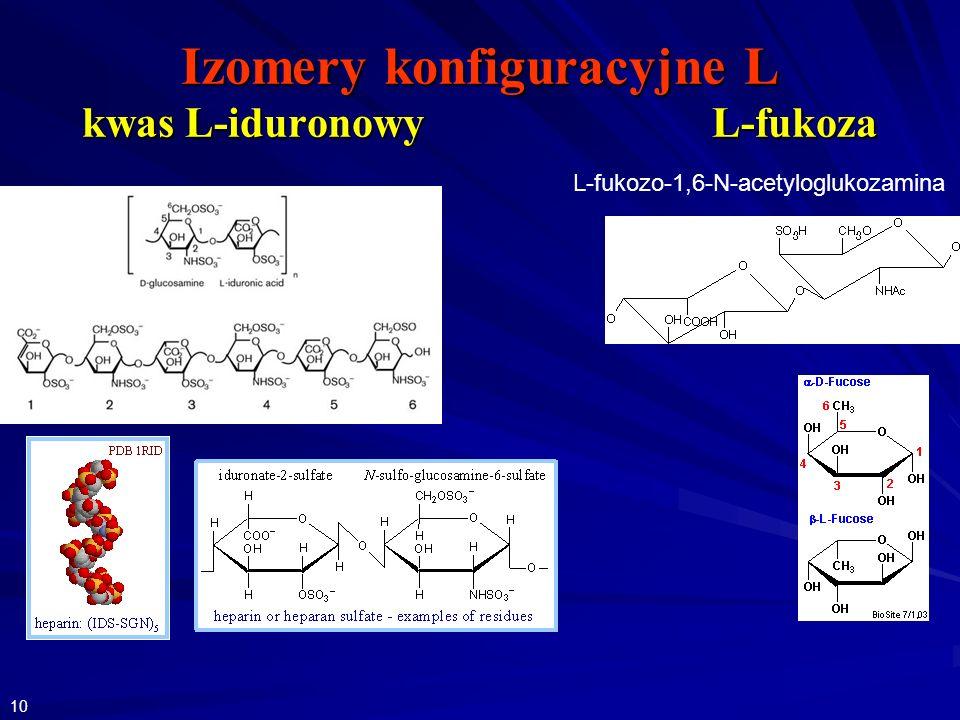 Izomery konfiguracyjne L kwas L-iduronowy L-fukoza