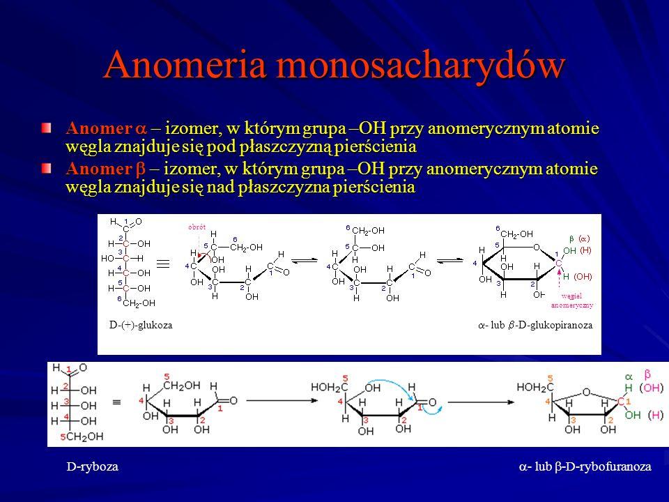 Anomeria monosacharydów