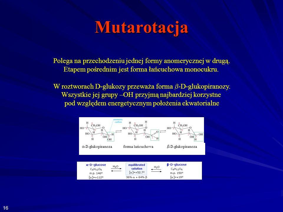 Mutarotacja Polega na przechodzeniu jednej formy anomerycznej w drugą.