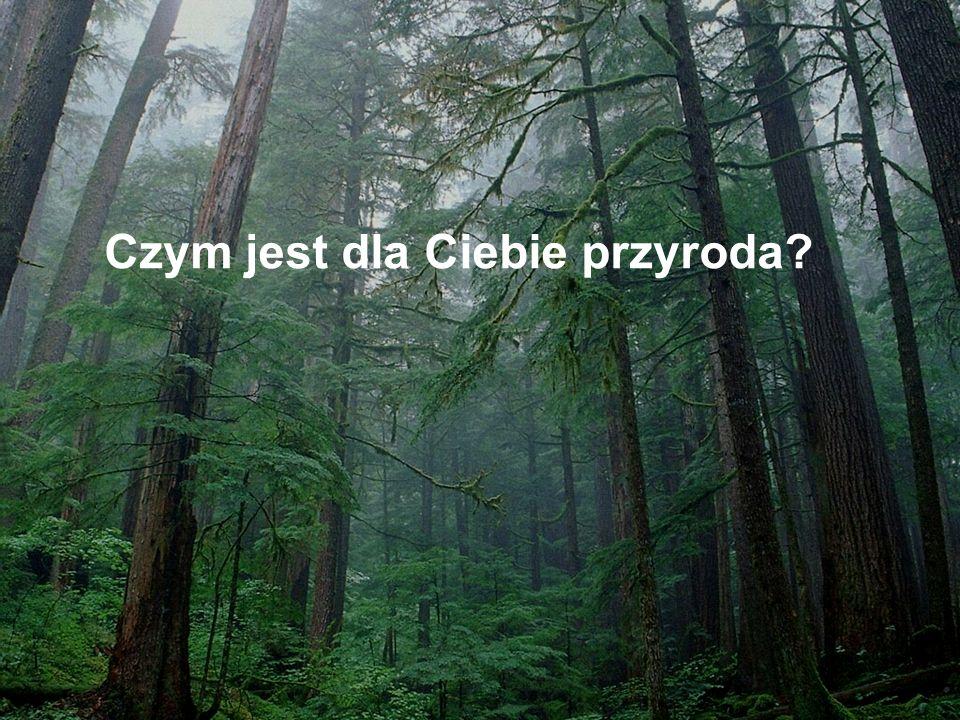 Czym jest dla Ciebie przyroda