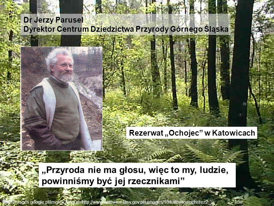 """Dr Jerzy ParuselDyrektor Centrum Dziedzictwa Przyrody Górnego Śląska. Rezerwat """"Ochojec w Katowicach."""