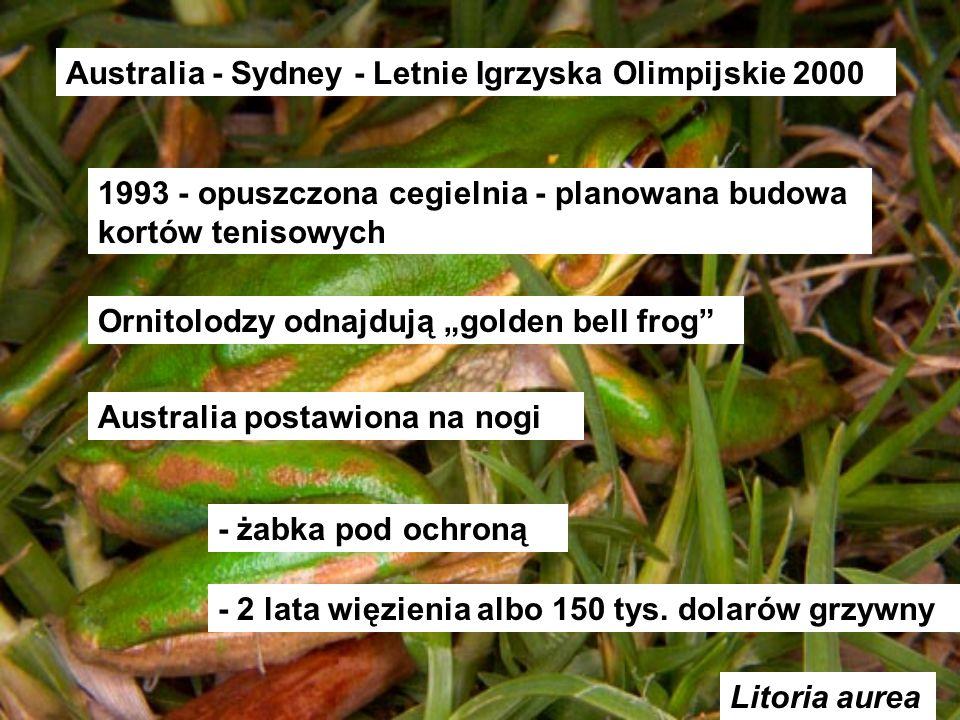Australia - Sydney - Letnie Igrzyska Olimpijskie 2000
