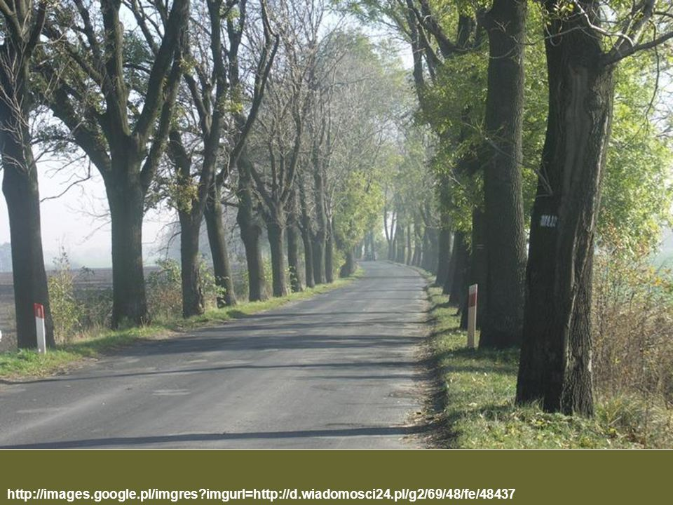 http://images. google. pl/imgres. imgurl=http://d. wiadomosci24